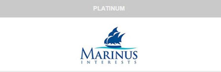 Platinum sponsors - 2020